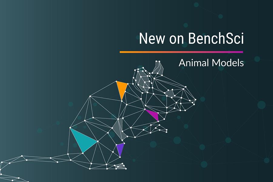 Animal_Model_Press_Release